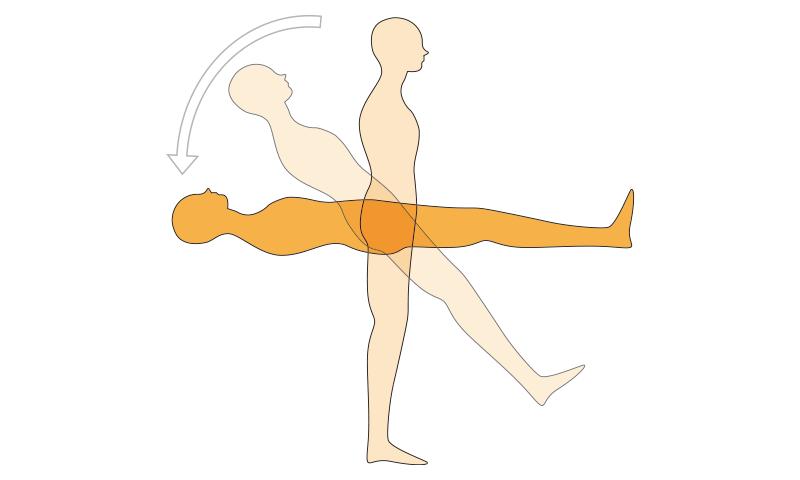 理想的な寝姿勢のイメージ